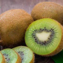 Actinidia chinensis 'Solo' – Solo öntermékeny kiwi